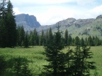 Wyoming Summer Solace